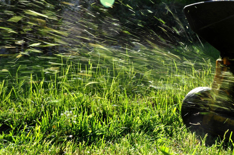Ein Rasenmäher in Aktion